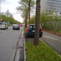 Dunkelblauer Volvo stehe versteckt zwischen den Bäumen. Unter Umständen schwer zu sehen.