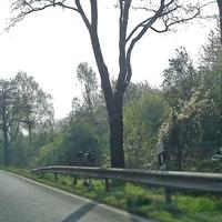 Auf der Industriestraße Mitte (K 30) zwischen SZ Lebenstedt  und SZ Watenstedt, Richtung Watenstedt, vor dem OE und dem Bus und LKW Hersteller MAN, Fahrtrichtung Wolfenbüttel in der 70iger Zone.