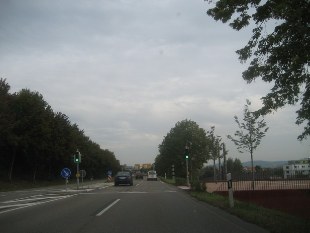Normal_img_1058