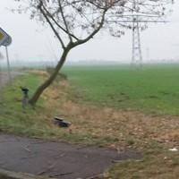 Hinter der Kurve aus Richtung Delitzsch kommend in Richtung Autobahn sehr schlecht zu sehen!!