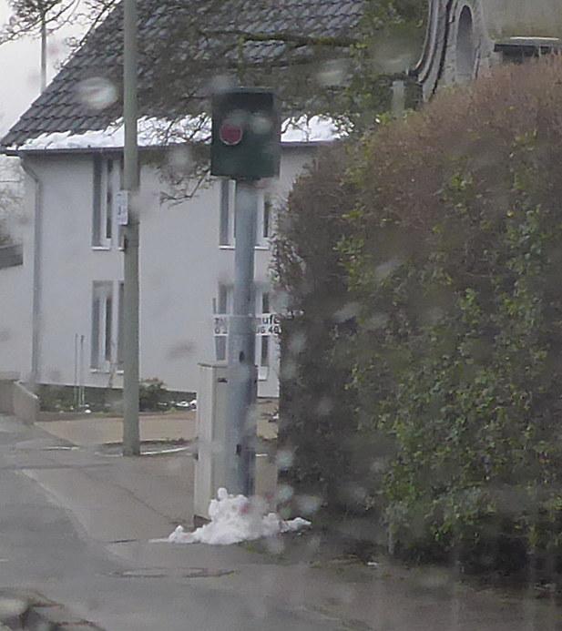 Normal_obschwarzbach_detail_p1000066_-_kopie