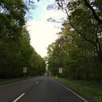Richtung Celle