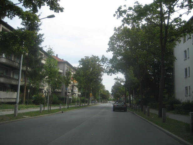 Normal_img_6781