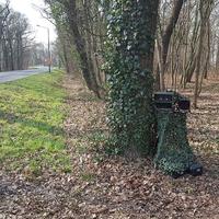 direkt an einem Baum, mit Tarnnetz getarnt