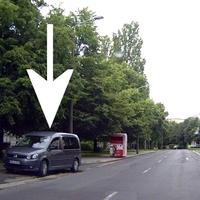 Pappelstraße Richtung Netto