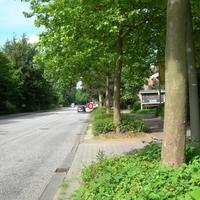 HH-HN 4591 Richtung Volksdorf