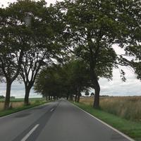 Richtung Franzburg/Richtenberg