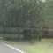 Blitzer B70 Richtung Lingen, kurz vor Varloh. Caddy steht versteckt in den Bäumen.