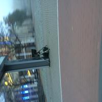 Am Rathaus. Beginn der Messung war gegen 6 Uhr, danach war Umzug zum Aldi in der Deminerstraße.