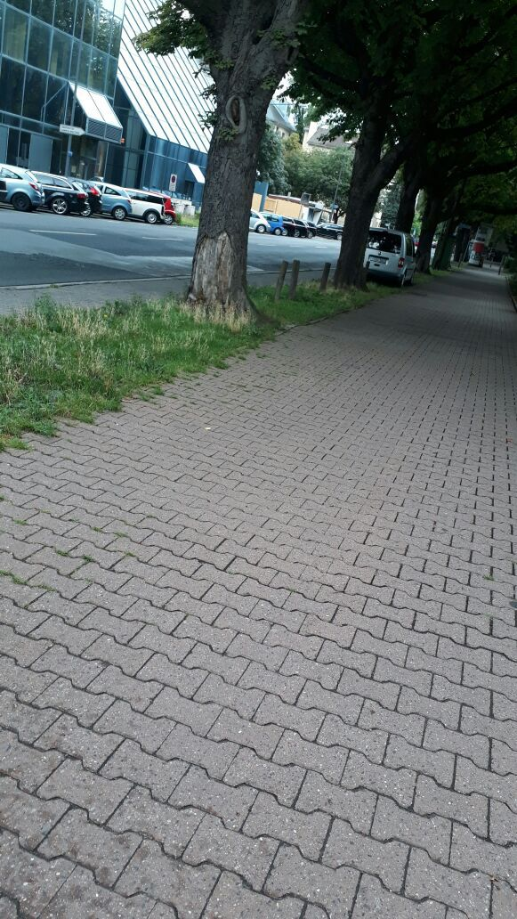 Normal_blitzerffm