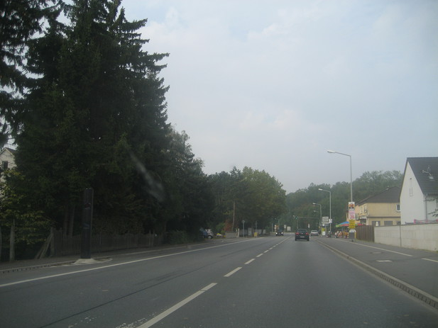 Normal_img_4896