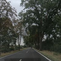 Richtung Ludwigslust/A14