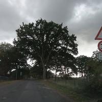8 Jahre später und die Landstraße wurde immer noch nicht saniert.