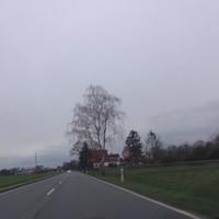 Richtung Nienburg