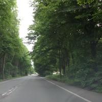 Richtung A1