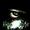 Hardstyle_eye